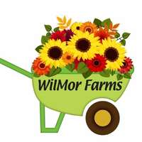 Wilmor_farms_logo