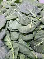 Babycollards