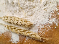 Flour_and_wheat